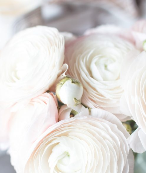 5 tips to keep your fresh flowers longer   Bikinis & Passports