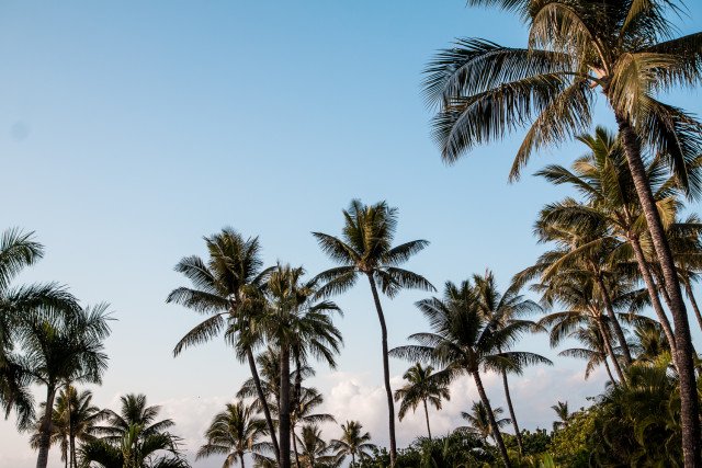 Hotel Review: Four Seasons Resort at Wailea Maui | Bikinis & PassportsHotel Review: Four Seasons Resort at Wailea Maui | Bikinis & Passports