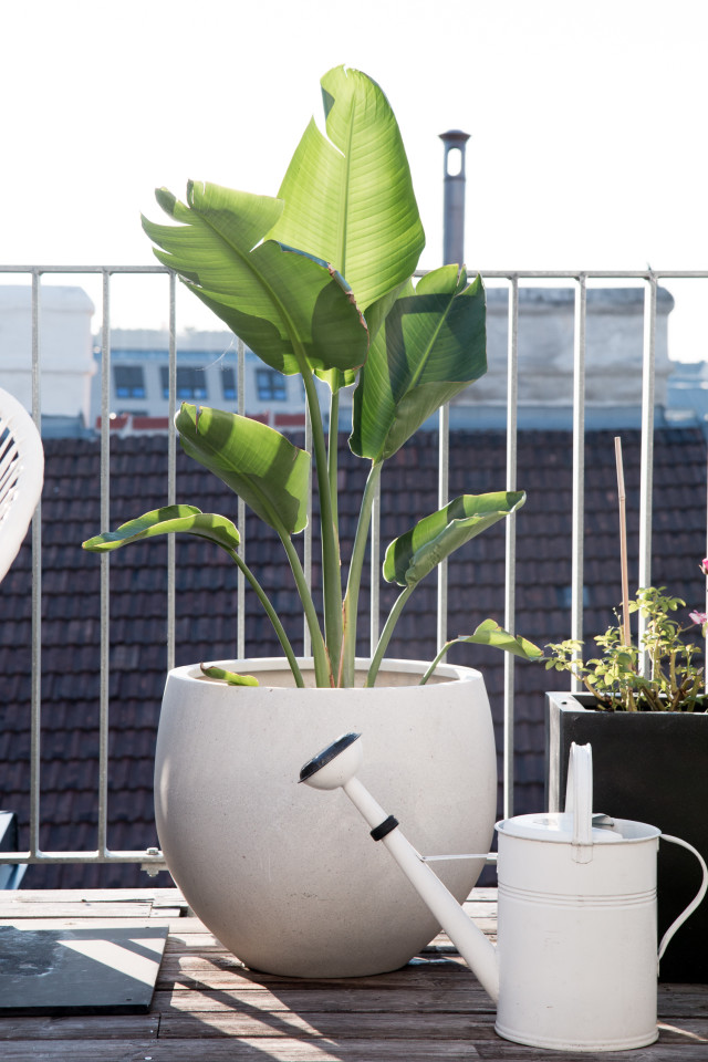 Rooftop Living Room: Our Perfect Outdoor Space For Summer   Bikinis & Passports