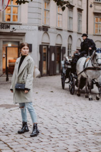 Horse Carriage Ride Vienna | Bikinis & Passports