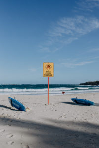 Australia Travel Diary Sydney | Bikinis & Passports