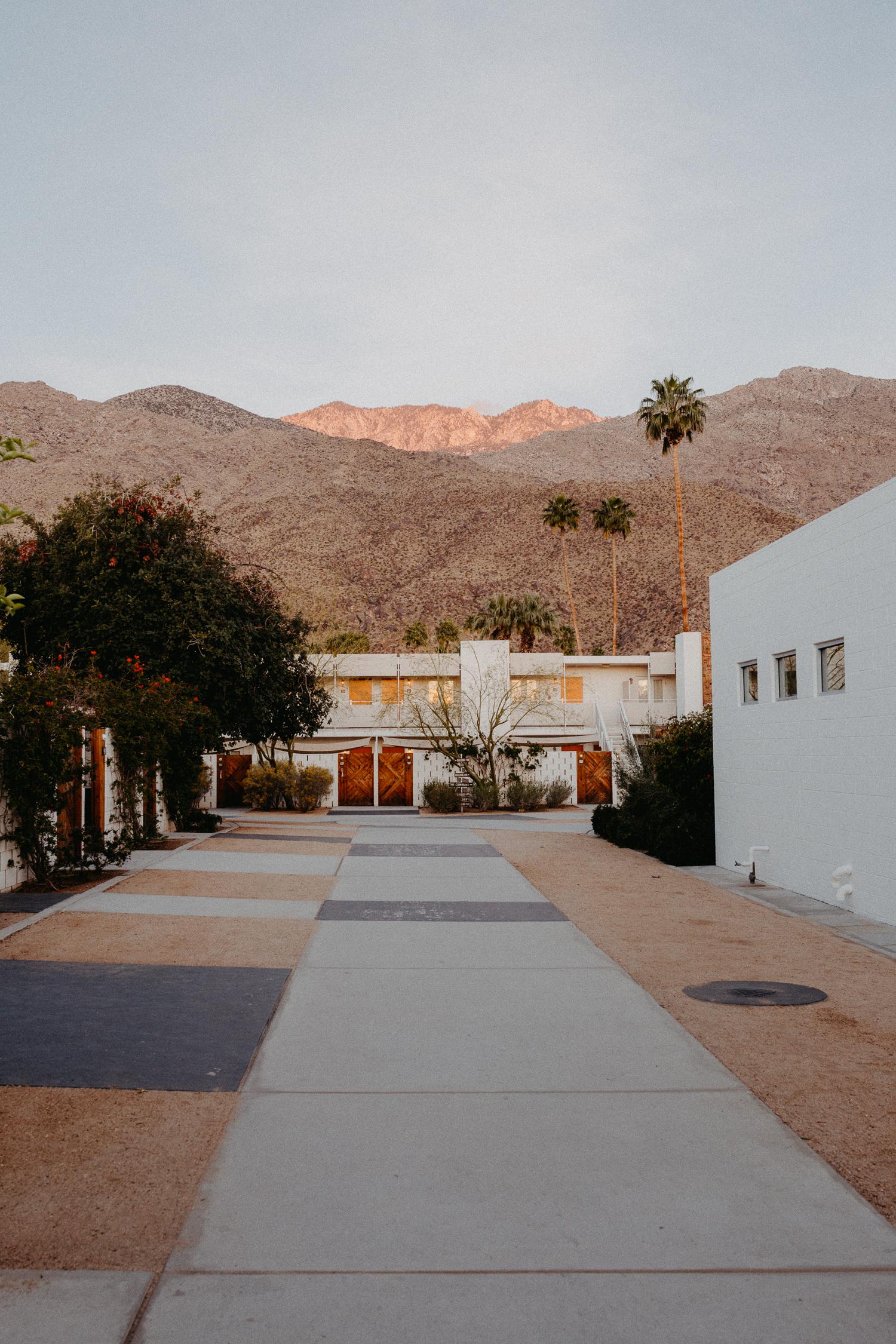 The Ace Hotel Swim Club Palm Springs | Bikinis & Passports