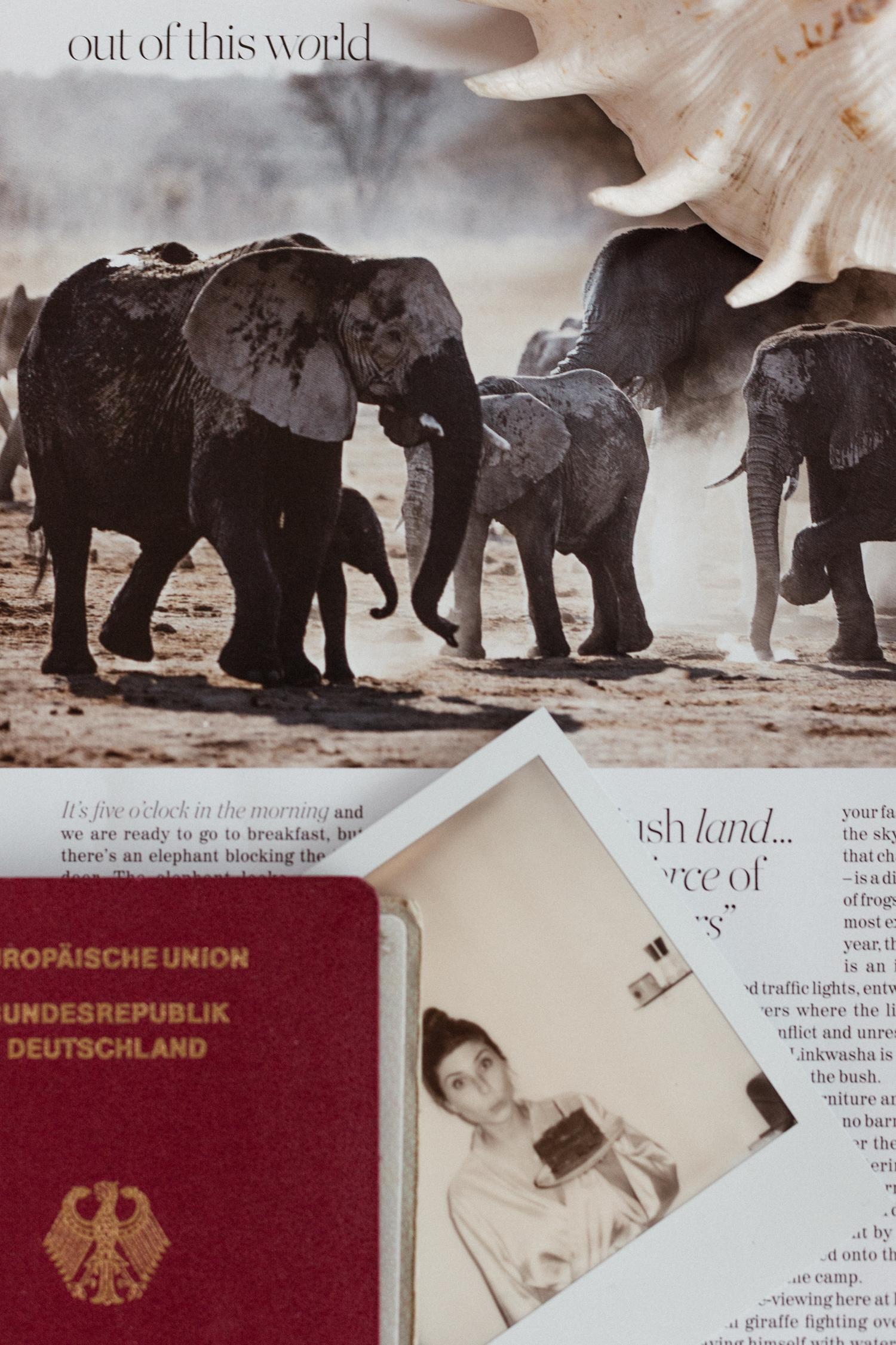 Gift Guide for Him + Travel Gift Guide - Bikinis & Passports