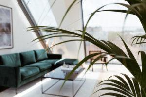 Vicky Heiler Apartment, Living Room: Green Velvet Sofa - Bikinis & Passports